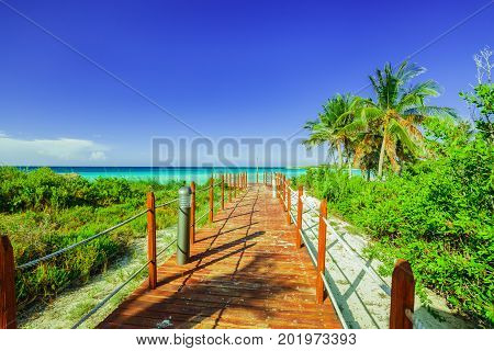 great amazing view of wooden bridge leading to the beach and tranquil turquoise ocean through tropical garden