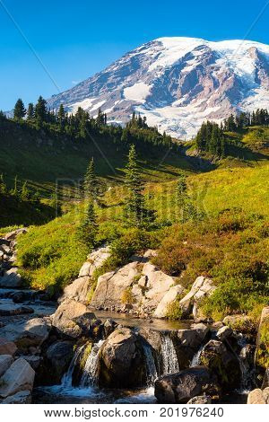 A stream with a small waterfall descends from the upper slopes of Mt Rainier