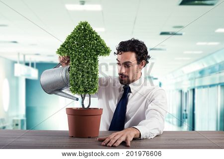 Businessman watering a plant that grows like an arrow . Concept of growing of company economy .