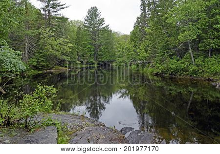 Backwater Bayou in the North Woods in Chutes Provincial Park in Ontario Canada