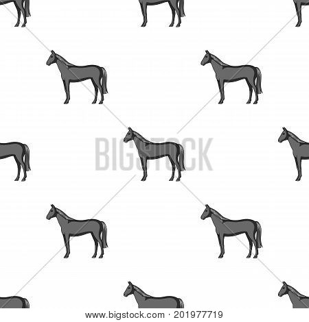 Horse.Animals single icon in monochrome style vector symbol stock illustration .