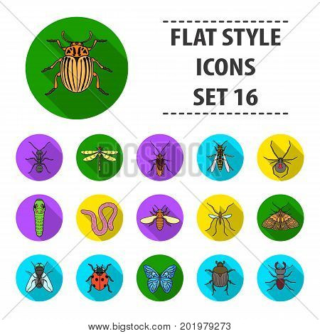 Insects set icons in flat design. Big collection of insects vector symbol stock illustration