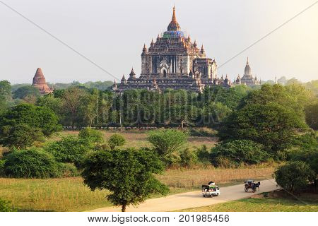 The tourist on the way in the plain of Bagan(Pagan) at sunrise Bagan Myanmar