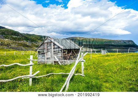 Wooden shed view in Northern Norway during summer