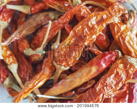 Hot Chili Pepper Vegetables Food