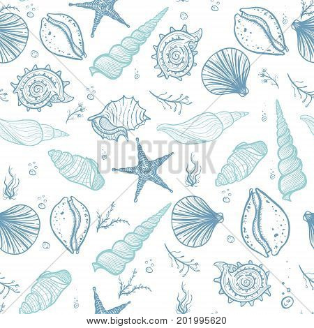 Seashells seamless pattern. Hand drawn doodle seashells starfish seaweed and corals. Creative seashells vector background.