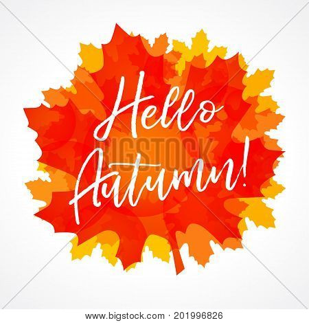 Hello Autumn maple leaf card. Lettering vector illustration on the background of autumn leaves. Fall sale concept autumn advertising for flyers, banners or posters