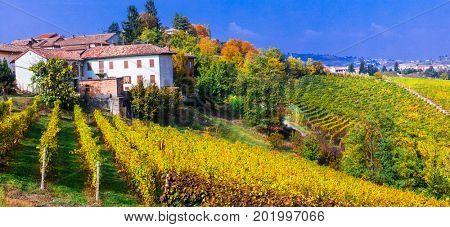 Scenic countryside with vineyards. Autumn scenery. Piedmont -vine region of Italy