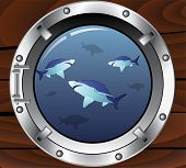 vector illustration of porthole and dangerous sharks poster