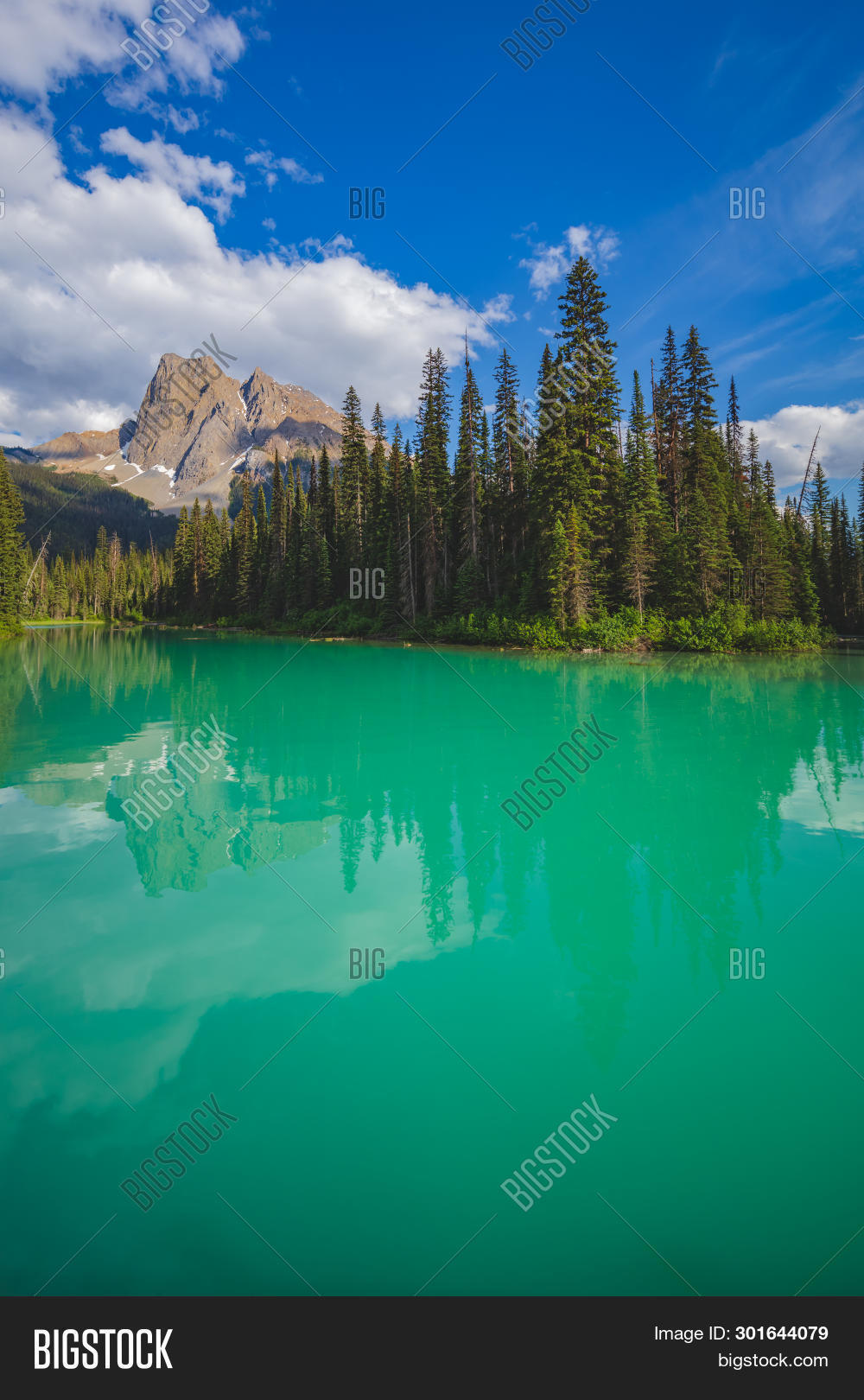 Emerald Lake In The Canadian Rocky Mountains