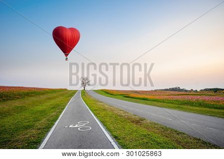 Red Hot Air Balloon In The Shape Of A Heart Over Cosmos Flower Field On Sunset