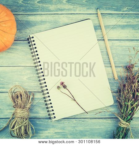 Square Top View Of Autumn Orange Pumpkins And Dry Flowers With Grass Thanksgiving Background Over Bl