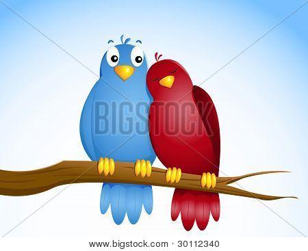 paar Vögel