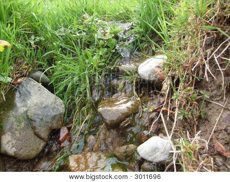 Streem With Stones