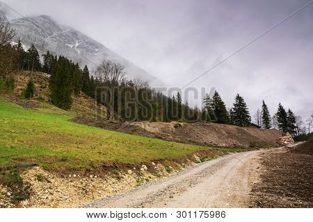 Cycling On Alps On A Rainy Day. Rocky Road In Mountain Nature. Green Forest Road. Nature. Road. Natu