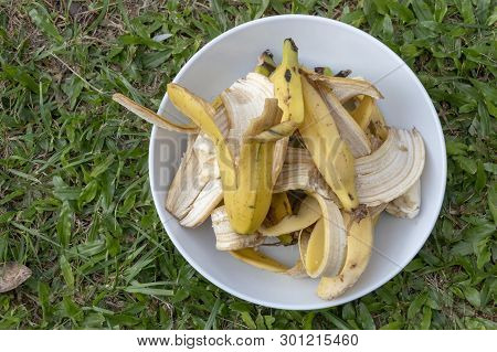 A Plate Of Banana Peels