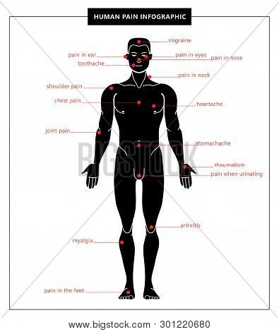 Human Pain: Migraine, Toothache, Pain In Eyes, Ear, Nose, The Feet, Chest, Shoulder, Joint, Heartach