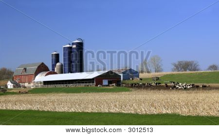 Midwest Dairy Farm