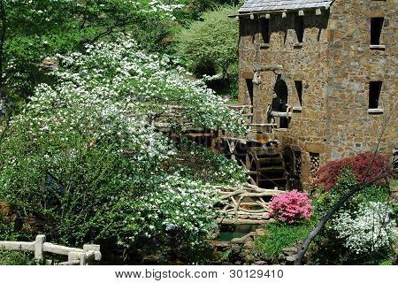 Old Mill - Spring 2010