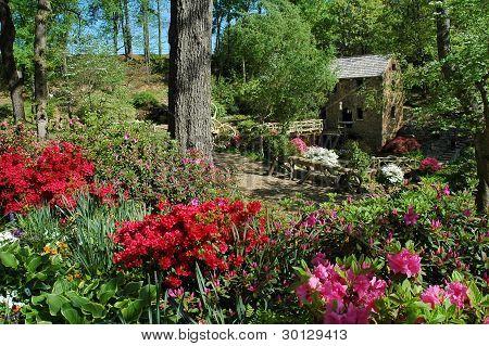 Old Mill- North Little Rock Arkansas