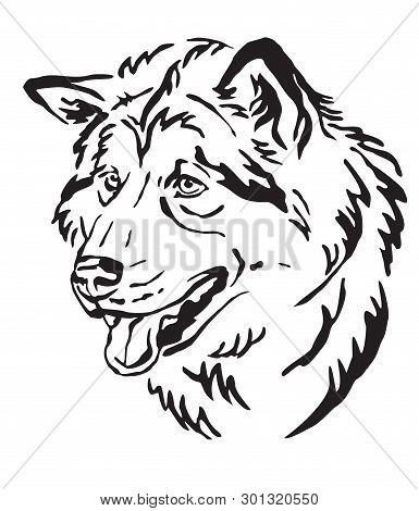 Decorative Outline Portrait Of Dog Alaskan Malamute Looking In Profile, Vector Illustration In Black