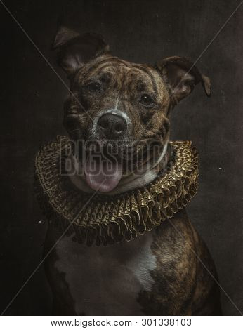 portrait of a baroque style dog of ppp breed