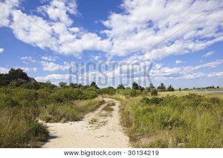 cape cod: rural dirt road