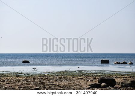 Dyllic Coastline With Calm Water By The Baltic Sea At The Swedish Island Oland