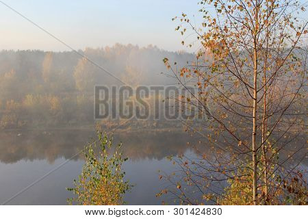 Trees with fall foliage on country park and river