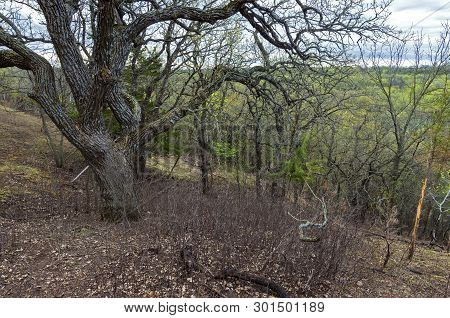 Atop Wooded Hills Of Flandrau State Park Overlooking Valley Near New Ulm Minnesota