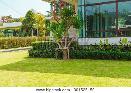 Green Lawn, The Front Lawn For Background, Garden Landscape Design With Modern House., Landscaped Fo