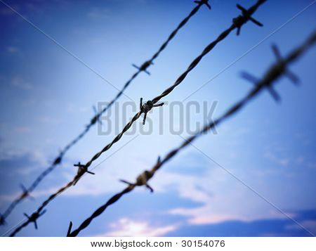 Barbed Wire Against Evening Sky