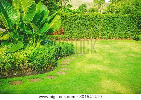 Garden In Spring, Pathways With Green Lawns, Landscaping In The Garden, Curve Walkway On Green Grass