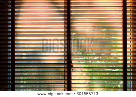 Wooden Bamboo Blind Opened, With Background Of Green Garden Outside