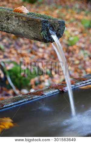 Mountain Spring Of Pure, Clear, Fresh Water With Water Trough In The Forest. Natural Resources, Wate