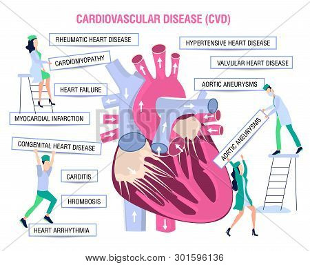 Human Health. Human Disease.prevention, Treatment And Diagnosis Of Heart Diseases, Cardiovascular Di