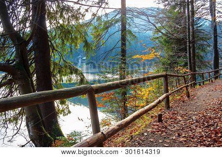 Synevyr Mountain Lake In Autumn Evening. Beautiful Nature Scenery Of Carpathian Mountains. Fallen Fo