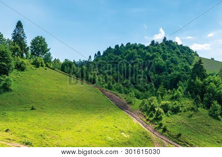 Path Uphill In To The Mountains. Summer Countryside Landscape. Grassy Meadow And Forest On The Slope