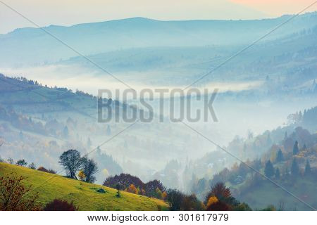 Rural Scenery On A Foggy Sunrise In Mountains. Trees On A Grassy Slope. Village Down In The Valley.
