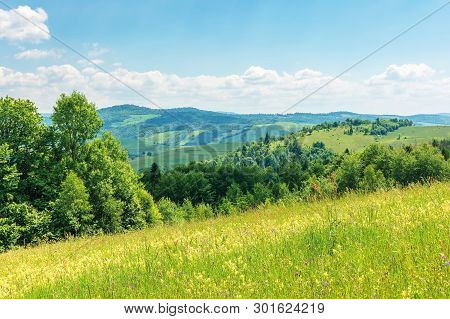 Beautiful Summer Countryside In Mountains. Wonderful Sunny Day Scenery. Grassy Rural Fields And Mead