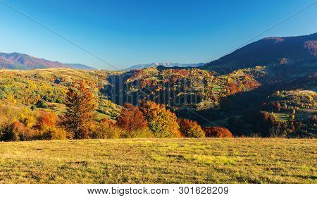 Wonderful Autumn Afternoon In Mountains. Beautiful Countryside Landscape With Trees In Red Foliage O