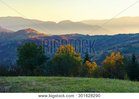 Wonderful Autumn Landscape At Dawn.  Beautiful Countryside Scenery In Mountains. Trees In Colorful F