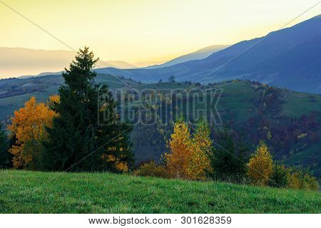 Wonderful Autumn Landscape At Dawn.  Beautiful Rural Scenery In Mountains. Trees In Colorful Foliage