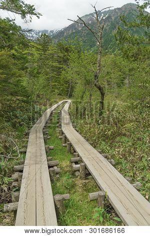 Wooden Path Of Hiking Trail In Hotaka Mountain Range, Kamikochi National Park, Kamikochi, Japan