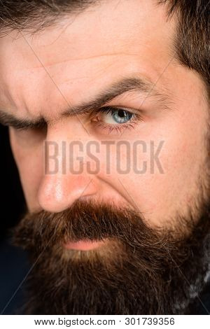 Closeup Portrait Of Confident Bearded Man. Portrait Of Brutal Bearded Man. Solid Man With Beard And