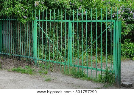 Iron Gates And Twigs In Green Vegetation Outside