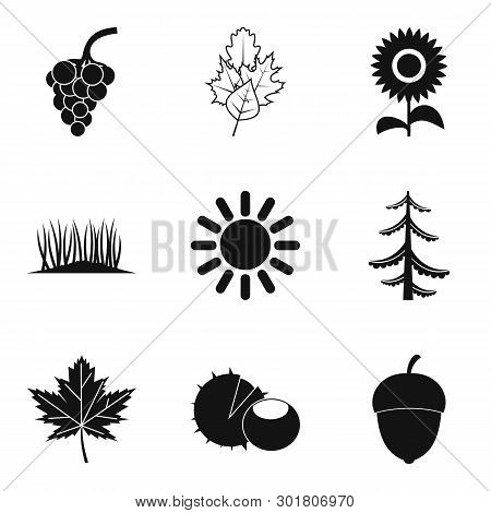 Natural Intervention Icons Set. Simple Set Of 9 Natural Intervention Icons For Web Isolated On White