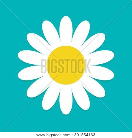 White Daisy Chamomile. Cute Flower Plant Collection. Love Card. Camomile Icon Growing Concept. Flat