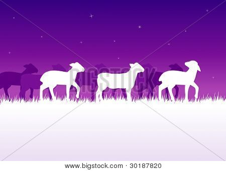 poster of lambs traveling in the violet night
