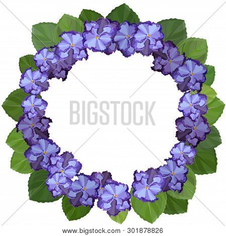 African Violet, Saintpaulia, On White Background. Wreath Frame With Copy Space